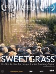 affiche-sweetgrass